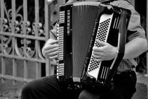 accordion-hohner